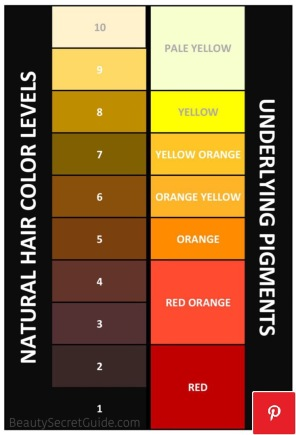 Natural Hair Color Levels and Underlying Pigments Chart